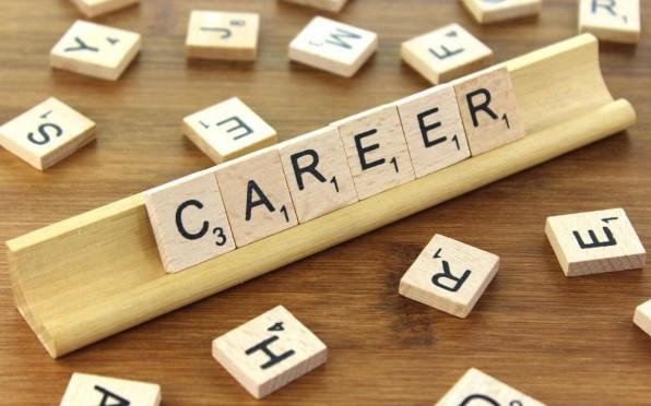Career advice wanted!