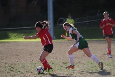 Gallery - Rosebowl Soccer 2019